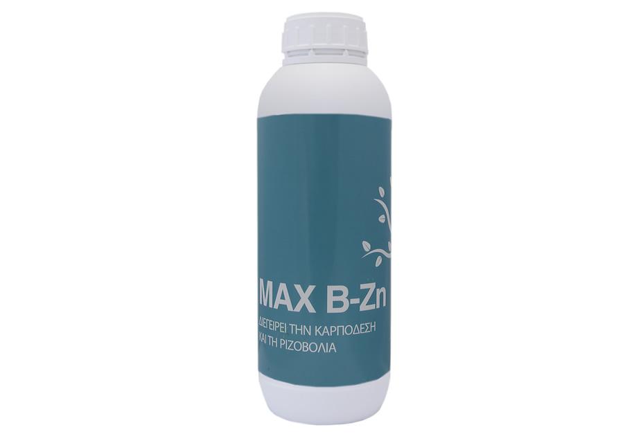 max-b-zn.jpg